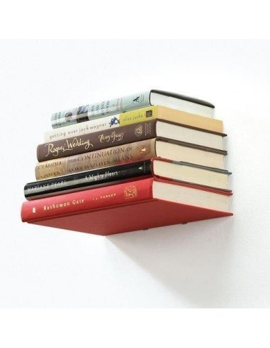 Estante invisible libros